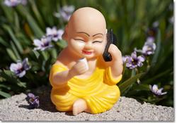 Biz-buddha