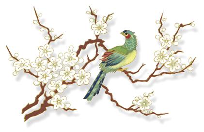 China-bird