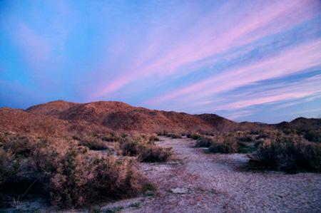 Desertdawn